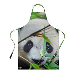 Фартук кулинарный Панда в лесу цвета 3D — фото 1