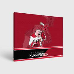 Холст прямоугольный Carolina Hurricanes цвета 3D — фото 1