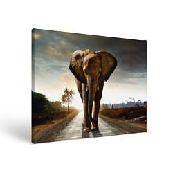 Холст прямоугольный Дикий слон цвета 3D-принт — фото 1