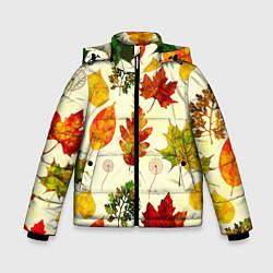 Куртка зимняя для мальчика Осень цвета 3D-черный — фото 1