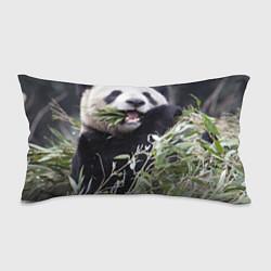 Подушка-антистресс Панда кушает цвета 3D — фото 1