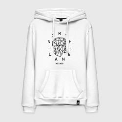 Толстовка-худи хлопковая мужская Northlane: Mesmer цвета белый — фото 1