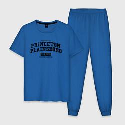 Пижама хлопковая мужская Princeton Plainsboro цвета синий — фото 1