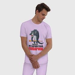 Пижама хлопковая мужская Здравствуй товарищ цвета лаванда — фото 2