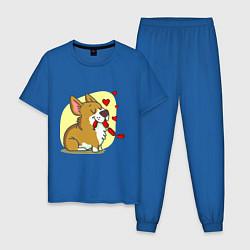 Пижама хлопковая мужская Влюбленный песик цвета синий — фото 1