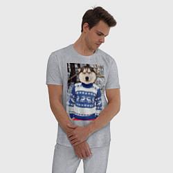 Пижама хлопковая мужская Хаски в свитере цвета меланж — фото 2