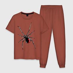 Пижама хлопковая мужская Черная вдова цвета кирпичный — фото 1