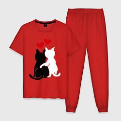 Пижама хлопковая мужская Кошачья любовь цвета красный — фото 1