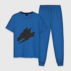 Пижама хлопковая мужская Саламандры (Salamanders) цвета синий — фото 1