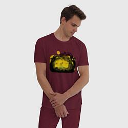 Пижама хлопковая мужская Пони цвета меланж-бордовый — фото 2