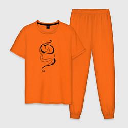 Пижама хлопковая мужская Лошадь в волнах цвета оранжевый — фото 1