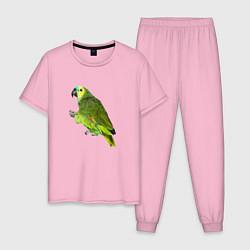 Пижама хлопковая мужская Попугайчик цвета светло-розовый — фото 1