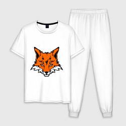 Пижама хлопковая мужская Лисица (Лис) цвета белый — фото 1