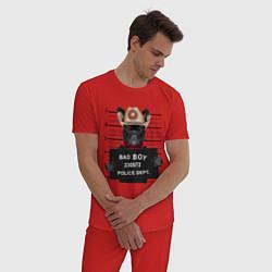 Пижама хлопковая мужская Bad Boy: Dog цвета красный — фото 2