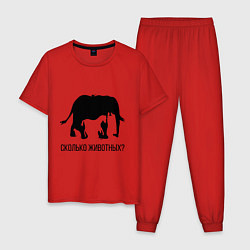 Пижама хлопковая мужская Сколько животных? цвета красный — фото 1