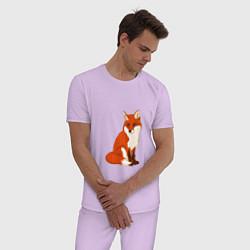 Пижама хлопковая мужская Рыжая лисица цвета лаванда — фото 2