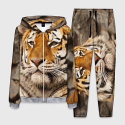 Костюм мужской Мудрый тигр цвета 3D-меланж — фото 1