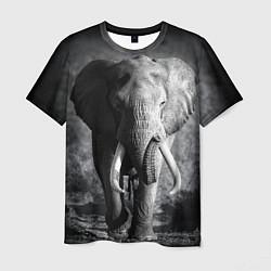 Футболка мужская Бегущий слон цвета 3D-принт — фото 1