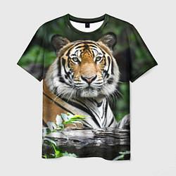 Футболка мужская Тигр в джунглях цвета 3D — фото 1