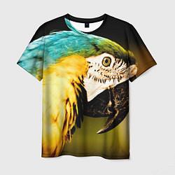 Мужская 3D-футболка с принтом Улыбка попугая, цвет: 3D, артикул: 10122074603301 — фото 1