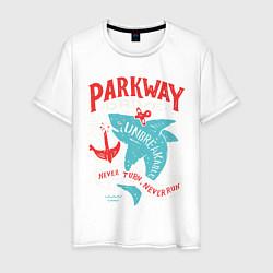 Футболка хлопковая мужская Parkway Drive: Unbreakable цвета белый — фото 1