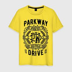 Футболка хлопковая мужская Parkway Drive: Australia цвета желтый — фото 1