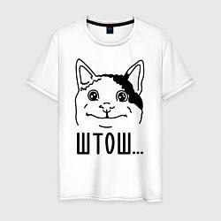 Мужская хлопковая футболка с принтом Штош Вежливый котик мем, цвет: белый, артикул: 10201811100001 — фото 1