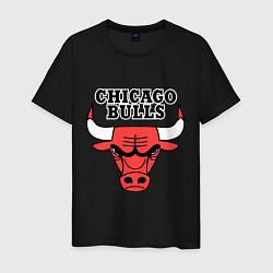 Футболка хлопковая мужская Chicago Bulls цвета черный — фото 1