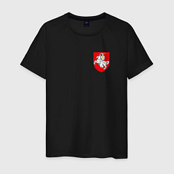 Футболка хлопковая мужская Погоня: герб цвета черный — фото 1