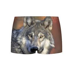Трусы-боксеры мужские Улыбка волка цвета 3D-принт — фото 1