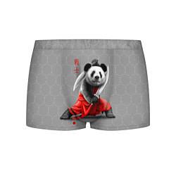 Трусы-боксеры мужские Master Panda цвета 3D — фото 1