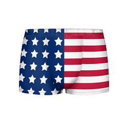 Трусы-боксеры мужские USA Flag цвета 3D-принт — фото 1