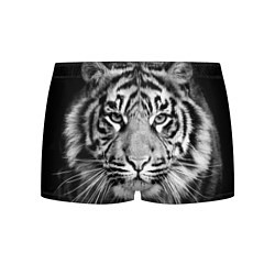 Трусы-боксеры мужские Красавец тигр цвета 3D-принт — фото 1