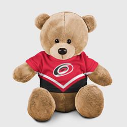 Игрушка-медвежонок NHL: Carolina Hurricanes цвета 3D-коричневый — фото 1