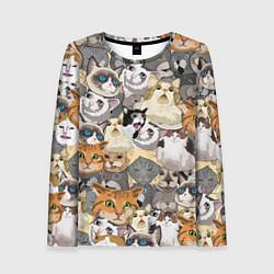 Лонгслив женский ALL CATS MEMES цвета 3D-принт — фото 1
